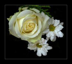 Rose und zierendes Beiwerk...