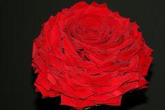Rosemea