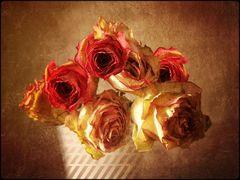 rosen........