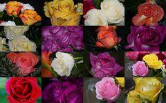 Rosen duften...