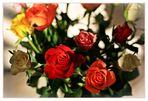 Rosen für Dich...
