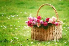 Rosen für dich!
