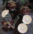 Rosen mit Kerzenlicht