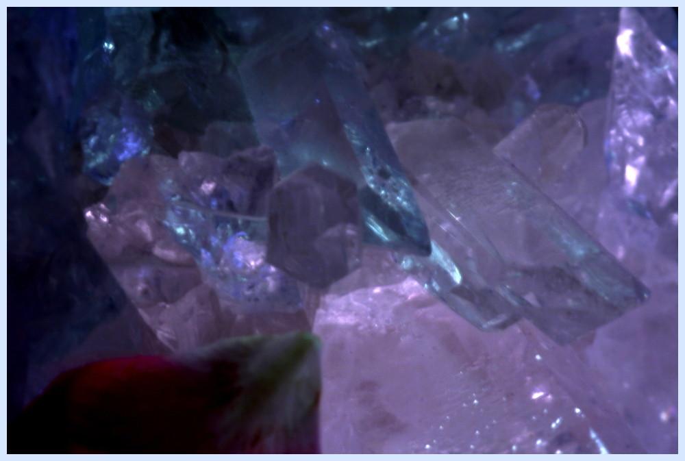 Rosenblütenblatt auf Kristall