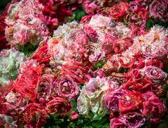 rosenblütenratatouille...