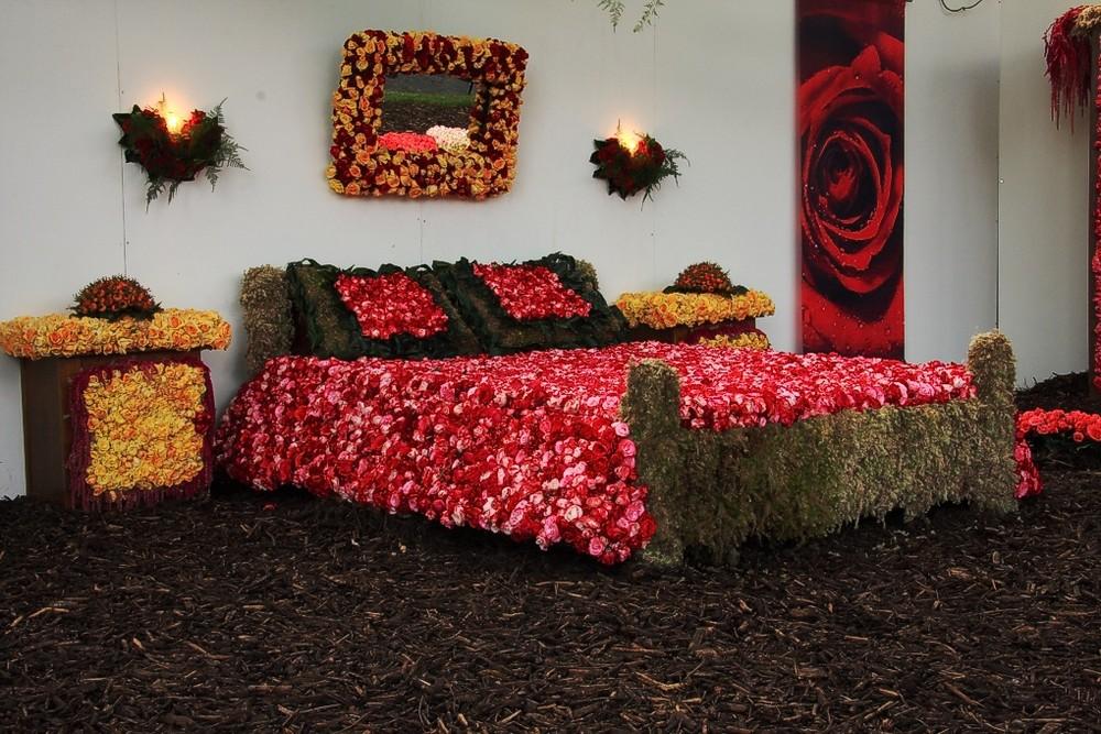 rosenfestival in lottum nl 2 foto bild europe benelux netherlands bilder auf fotocommunity. Black Bedroom Furniture Sets. Home Design Ideas