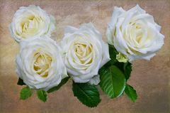 Rosengruß aus Neugablonz
