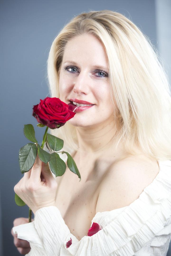Rosenporträt 7
