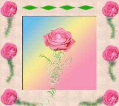 rosenrahmen