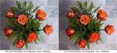 Roses 3D
