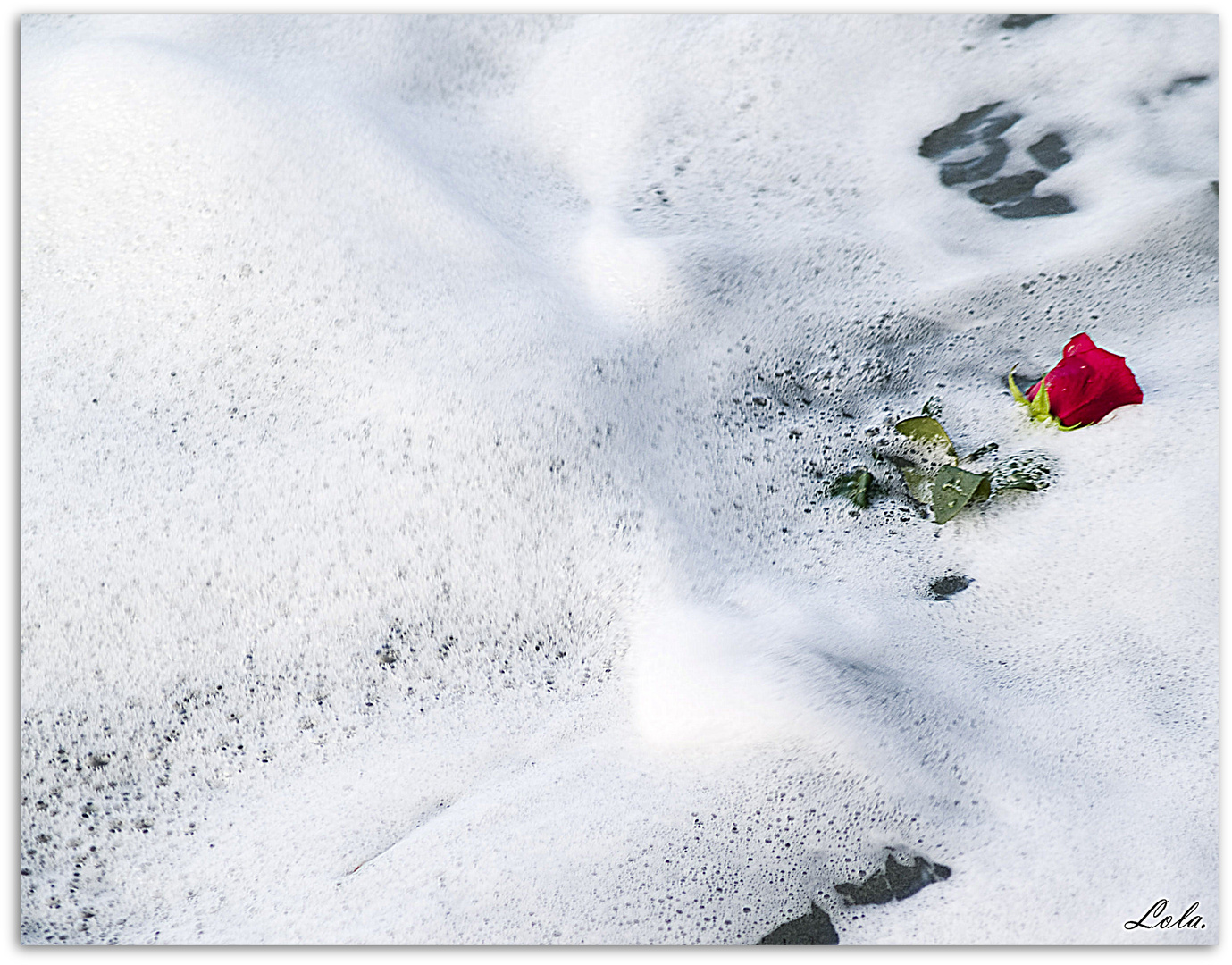 Roses and foam.