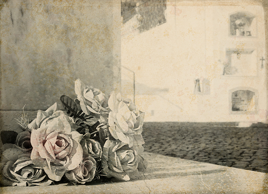 Roses for a lost love