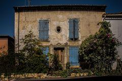 roses grimpantes sur la vieille façade
