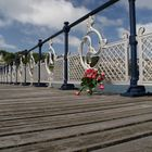 roses on the pier