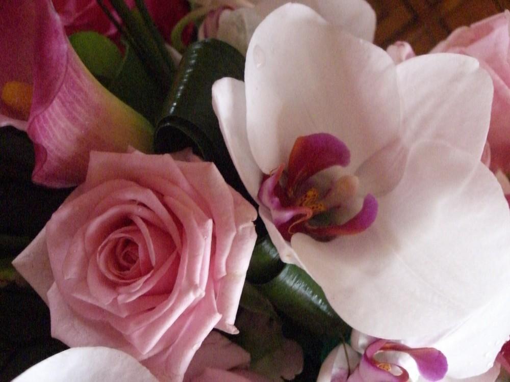 roses-orchidées
