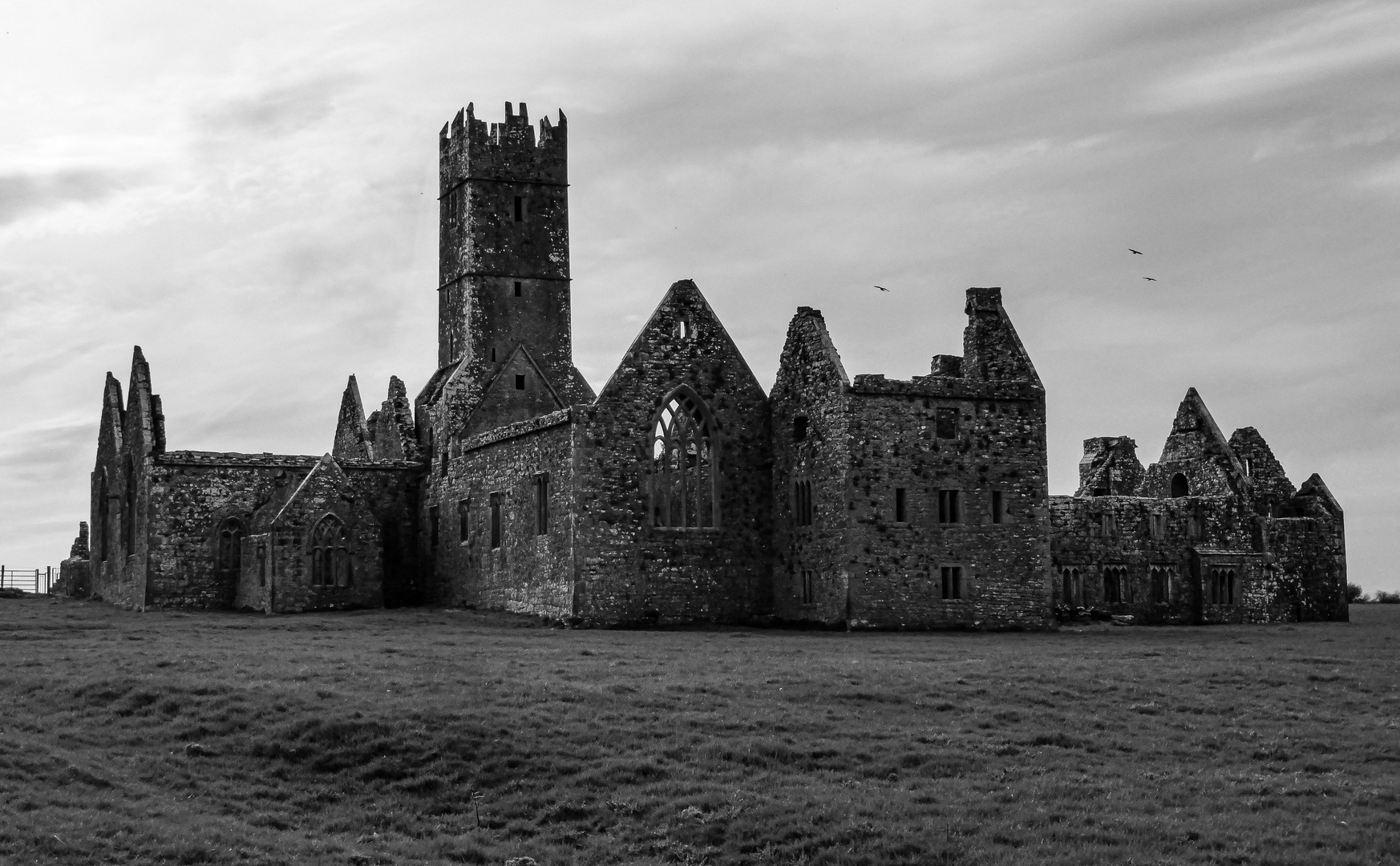 Ross Errilly Friary...