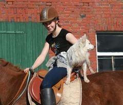 Ross und Reiter zugespitzt