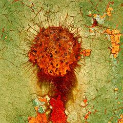 RostArt(133) - Infected