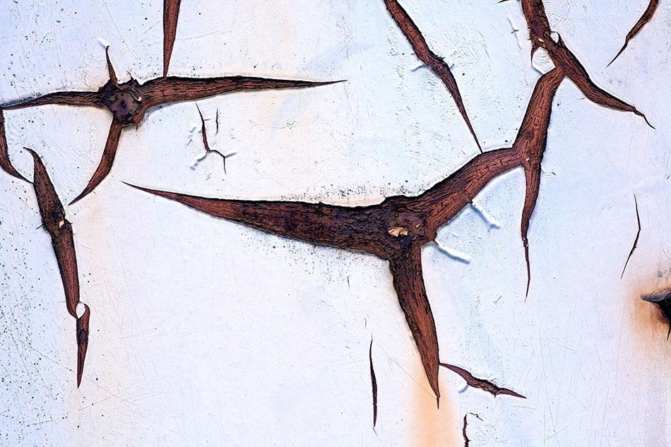 RostArt(50) - Synapses