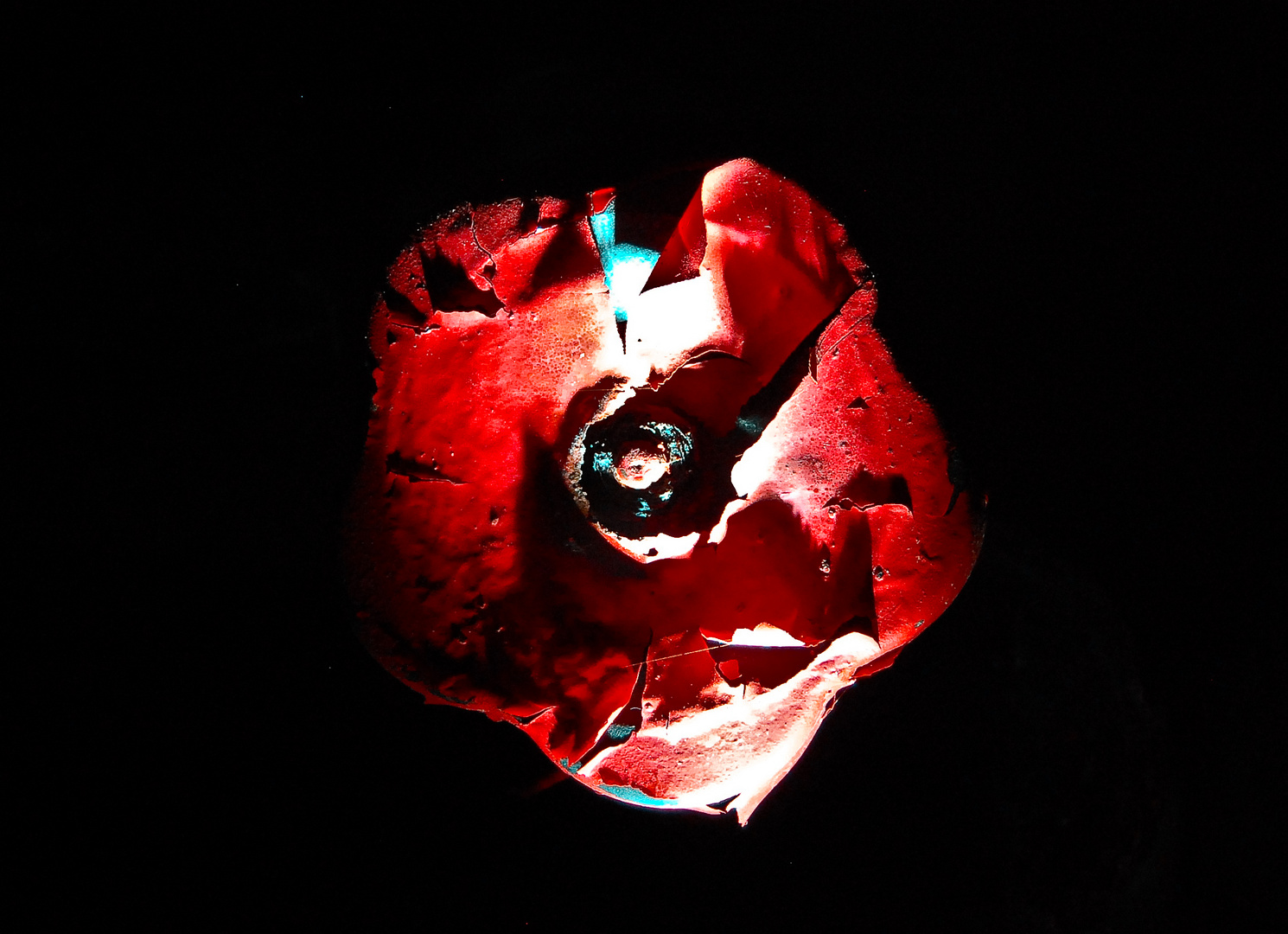 Rostblüte