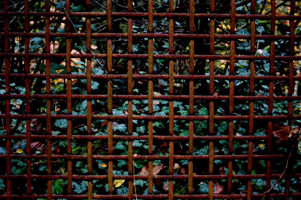 Rostiger Zaun Foto Bild Sonstiges Naturkunst Natur Bilder Auf