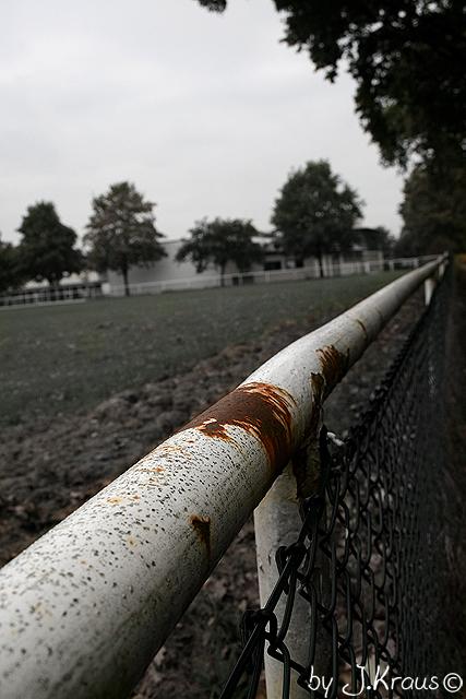 Rostiger Zaun Im Herbst Foto Bild Jahreszeiten Herbst Natur