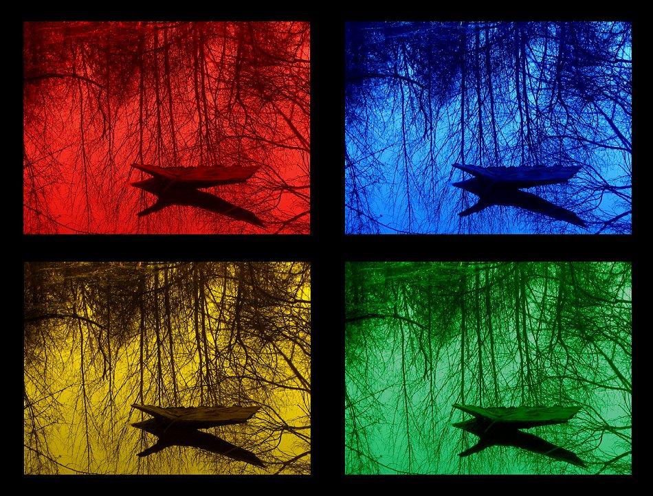 Rot Blau Gelb Grün Oder Gar Nich? Foto & Bild
