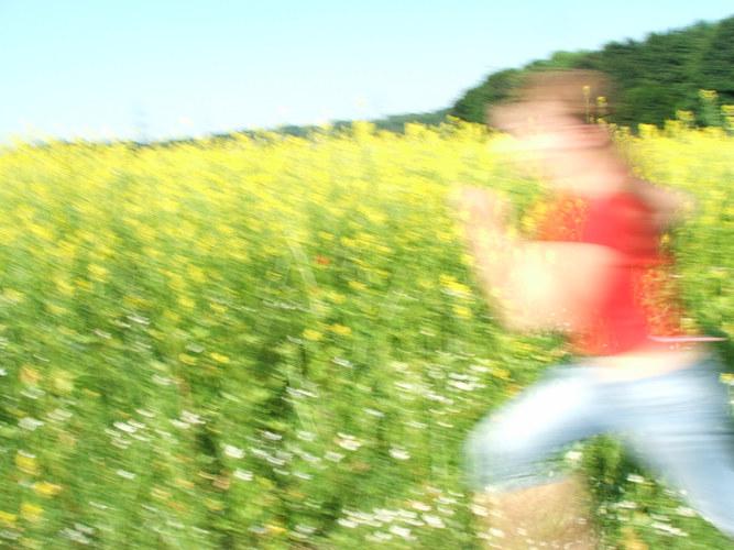 rot rennt, gelb steht still