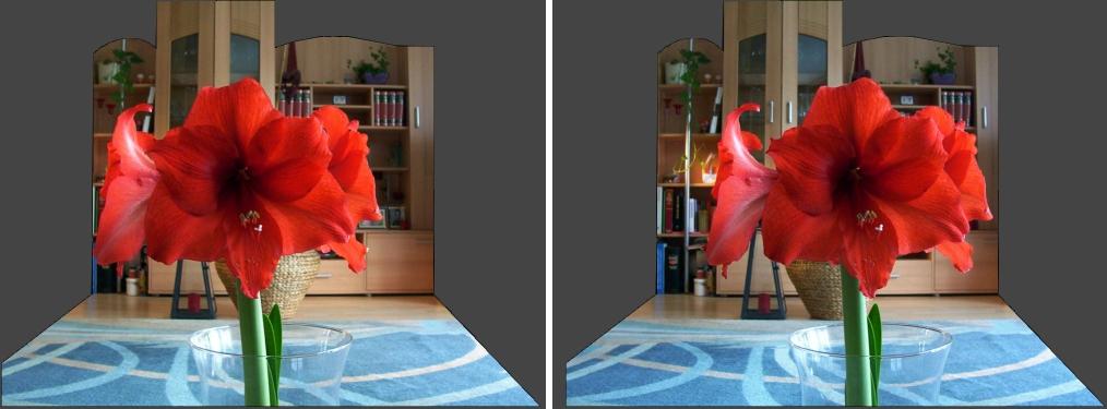 Rote Amaryllis diesmal Stereo Kreuzblick