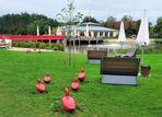 Rote Enten in Rietberg