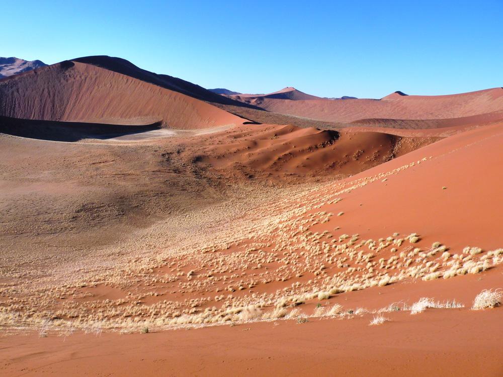 Rote Namibwüste