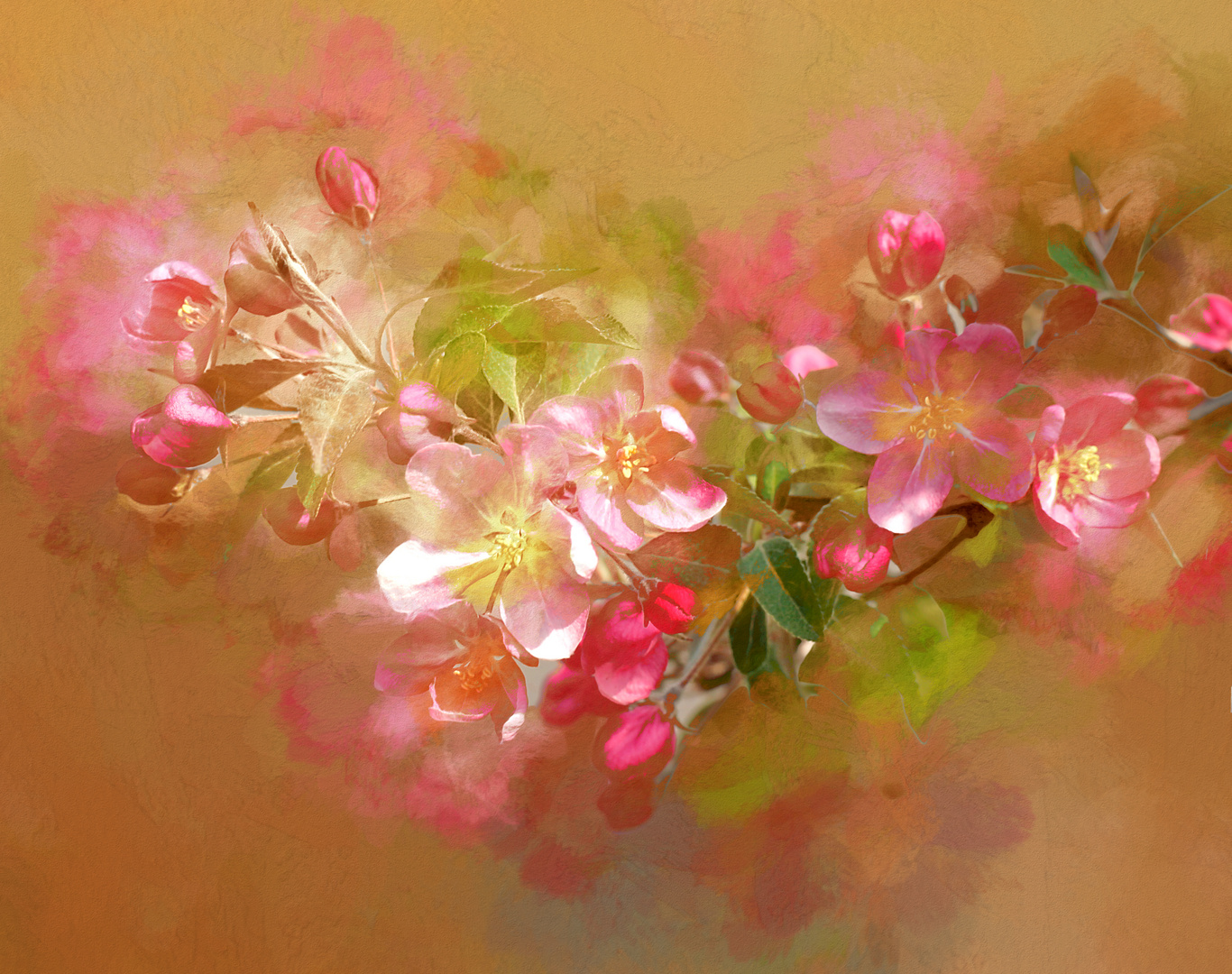 Rote rosa Blüten
