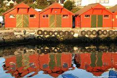 Rote Schuppen in Florö