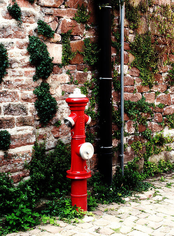 Roter Hydrant