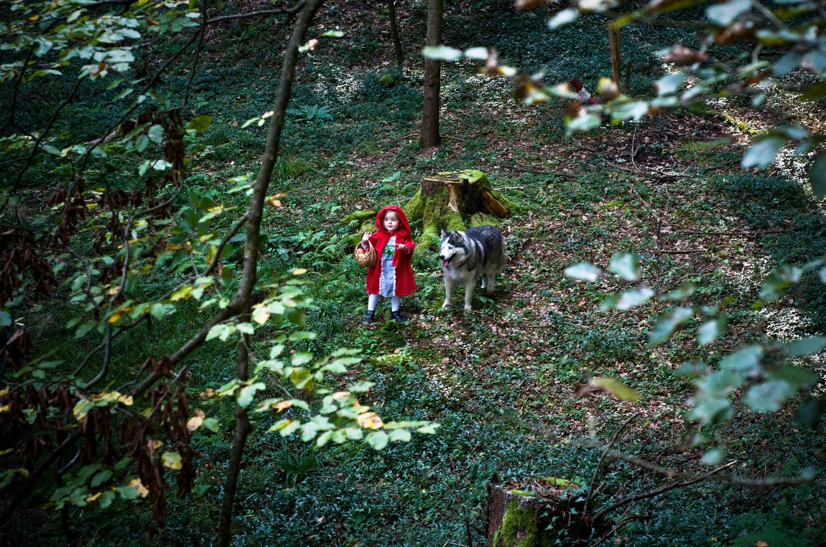 """Rotkäppchen und der """"böse"""" Wolf"""