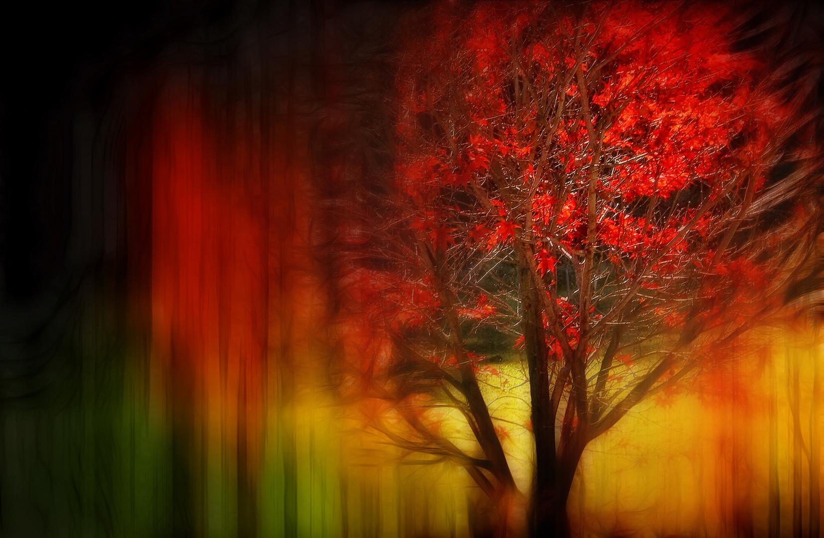 Rotlicht .....