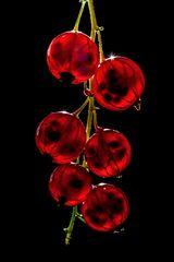 Rotlichtbeere ;-)) Ribes rubrum