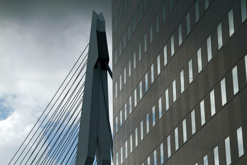 Rotterdam 2