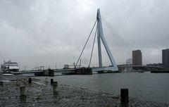 Rotterdam, Erasmusbrug