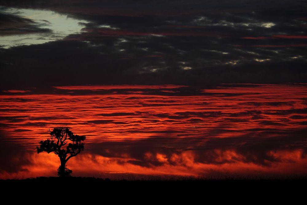 rouge ciel de coton