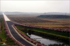 Route annexe