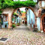 Route des vins à Riquewihr en Alsace.