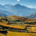 Route des vins du Val d'Aoste