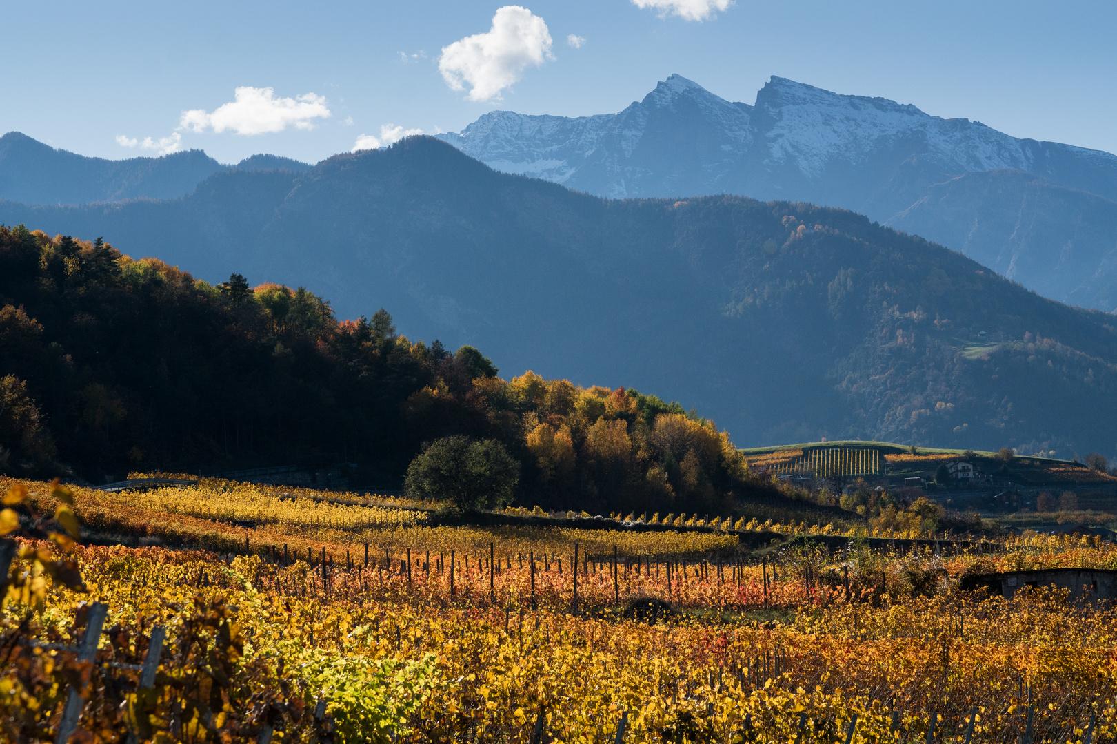 Route des vins du val d'Aoste - Jovençan mt 632