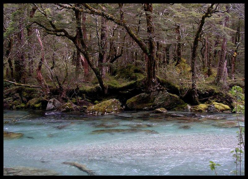 Routeburn River 2