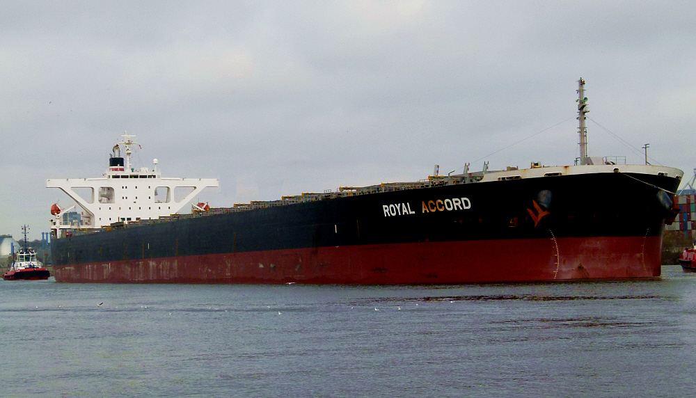 Royal Accord - Bulker