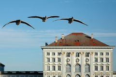 Royal Bavarian Geese Squadron - Kgl. Bayr. Gänsegeschwader