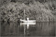 Ruderboot - Assuan - Überfahrt zur Kitchner-Insel