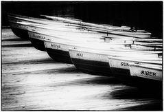 Ruderbootflotte