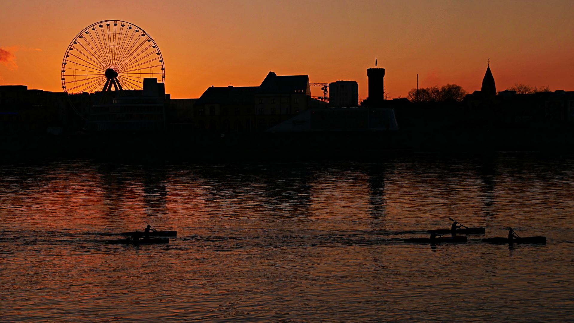 Ruderer auf dem Rhein